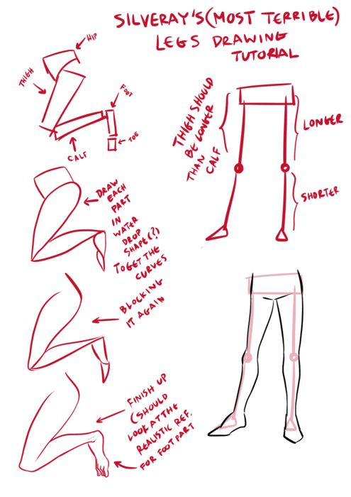 Character Design Beginners : Best character anatomy legs images on pinterest
