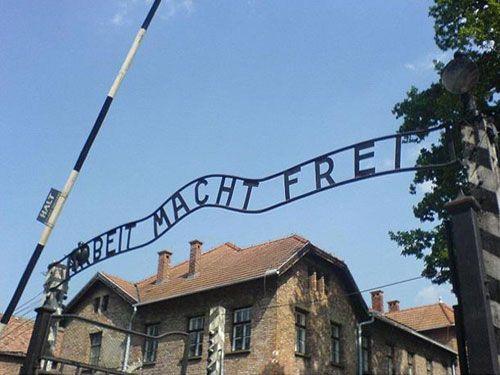 Auschwitz Birkenau and Memorial Museum - Small Group Tour