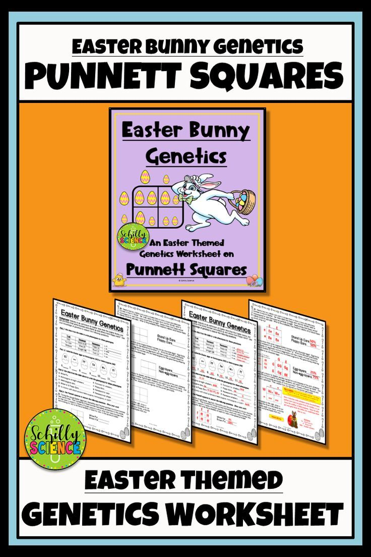 Easter Square Worksheet Easter Bunny