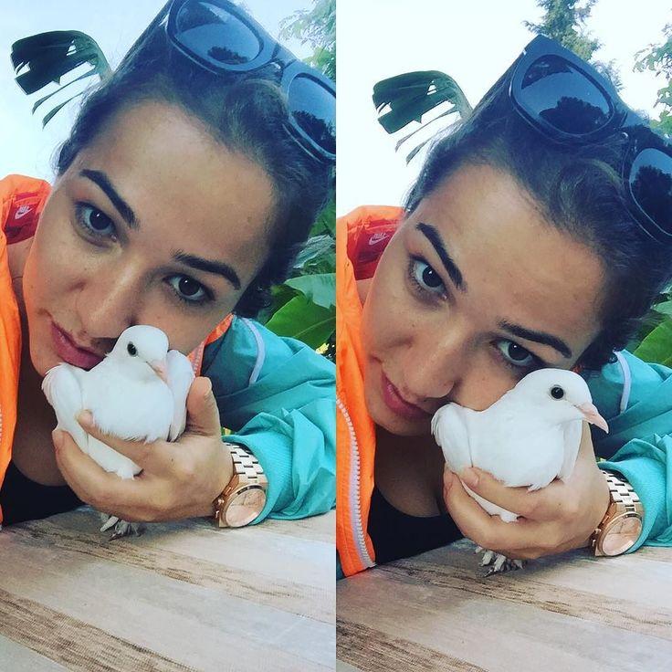 #beyaz#güvercin#uçuyor#fethiyede#son#gündür#bugün  by balimbetulonder #masiva http://masiva.org