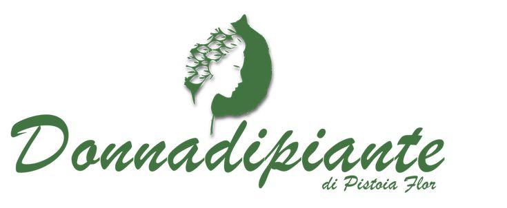 Juniperus horizontalis Wiltonii-Ginepro - conifere nane e tappezzanti online - conifere online