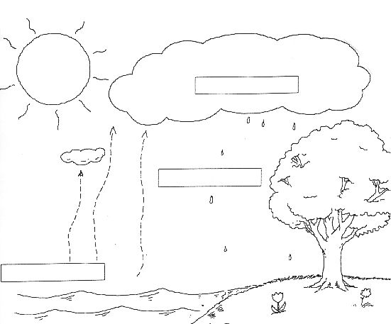 water cycle diagram worksheet school pinterest cycling and worksheets. Black Bedroom Furniture Sets. Home Design Ideas