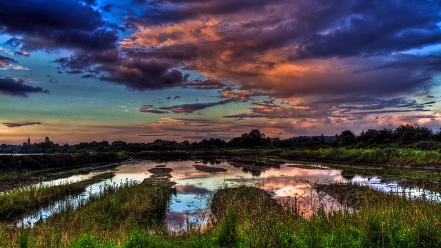 0296 - England, Nottingham, Attenborough Nature Reserve HDR by Barry Mangham, via Flickr