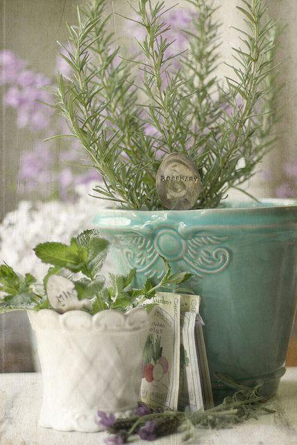 indoor herbs . . .Love these cottage pots.