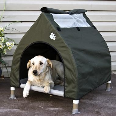 Because my puppy needs his own tent for when we go camping... cool-cot-dog-house
