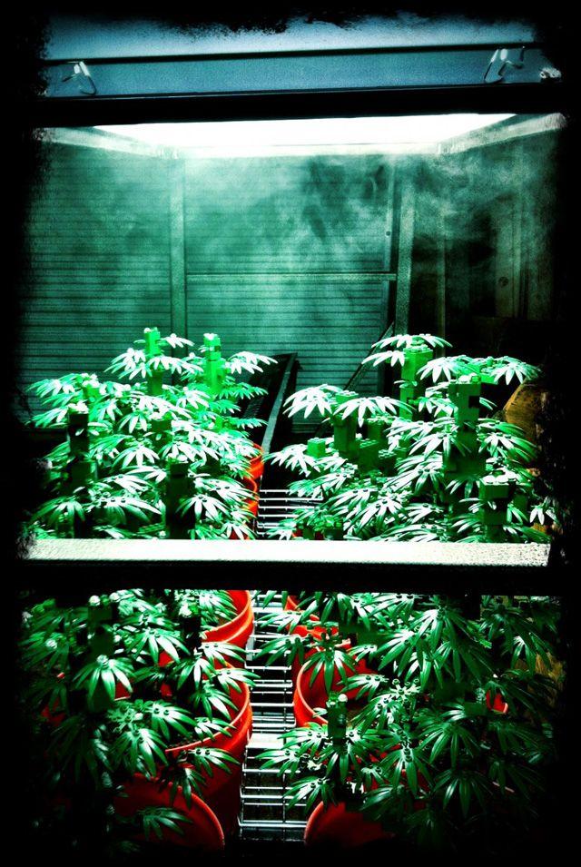 Art by the Ounce, A LEGO Marijuana Art Exhibition