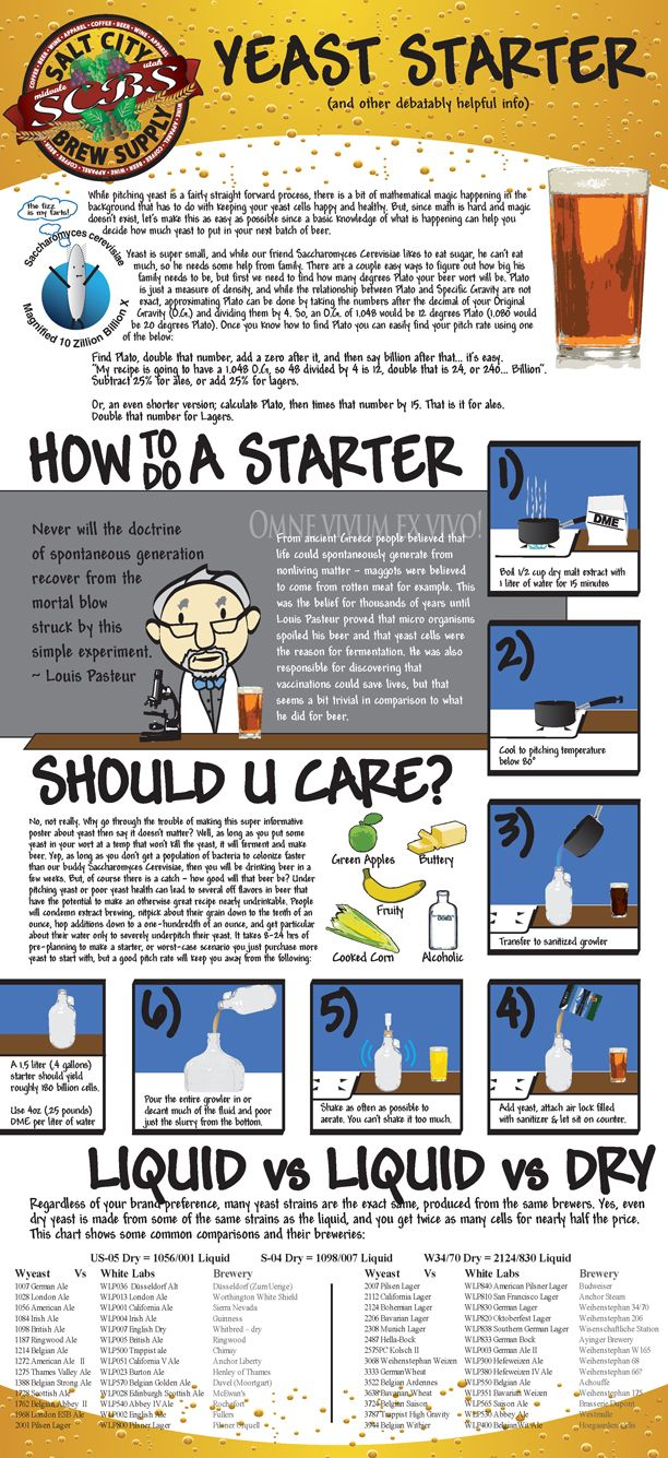 Cool infographic about beer yeast and yeast starters.