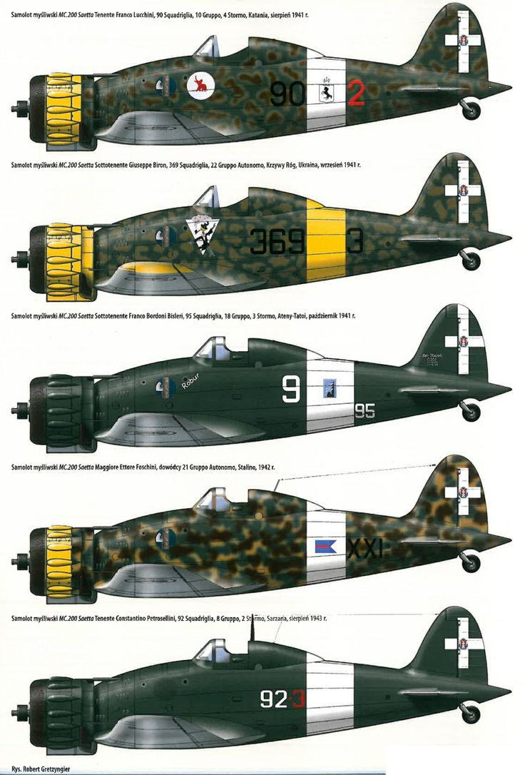 Macchi C.200 Saetta (also variously identified as the MC.200) (Italian: Thunderbolt). Eastern Front colour schemes