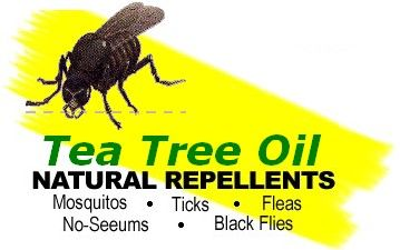 http://www.teatreewonders.com/natural-healing.html    Here is a site that gives all sorts of uses for Tee Tree oil, including Insect Repellent, bruises, and many other uses.
