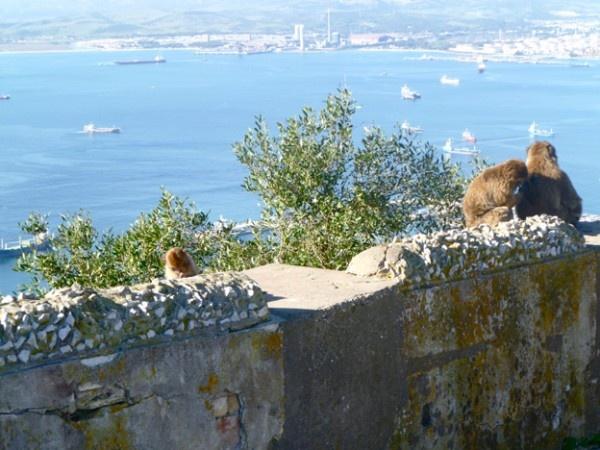 Gibraltar, Iberian Peninsula