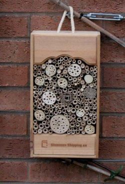 34 best images about bug boxes and insect houses on for Wooden wine box garden