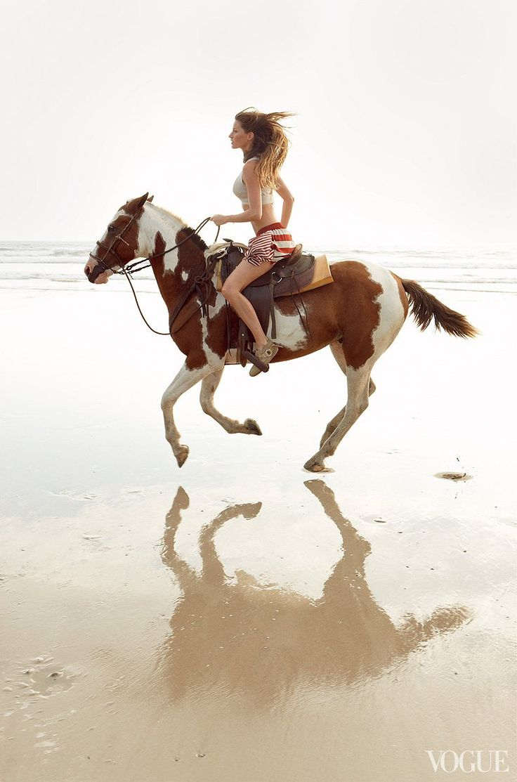 essays about horses in america Over time, these tribes dispersed and traveled as far as south america, forming their own cultures and some building great empires such as the aztecs, the mayans, and the incans need essay sample on american pageant chapter 1 summary.