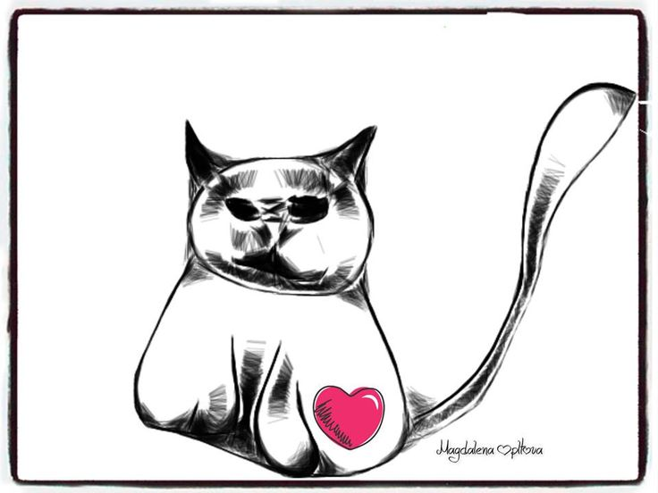 cat with love