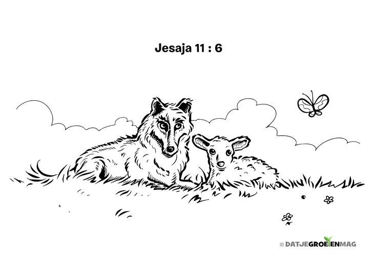 kleurplaat wolf en lam jesaja 11 6 bijbelverzen