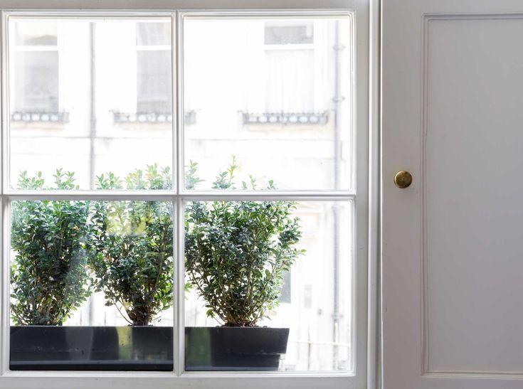 Wooden sash windows in kitchen.
