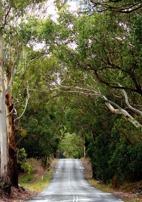 Country Roads, Adelaide Hills, South Australia