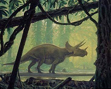 Tricerotops - Douglas HendersonDinosaurs Art, Triceratops Dinosaurs, Animal Art, Paleo Art, Prehistoric Animal, Dinosaurs Paleoart, Prehistoric Life, Douglas Henderson, Dino Art