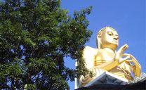 acmetours.com Circuit Sri Lanka