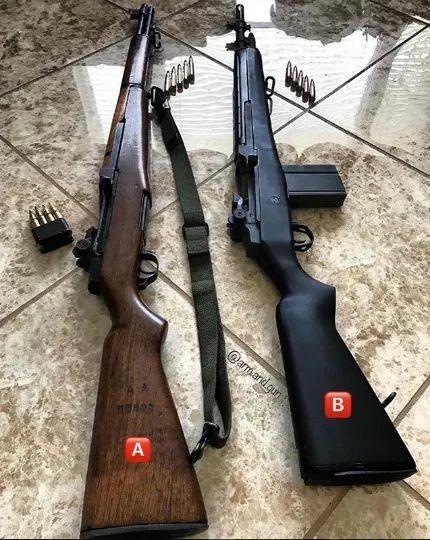M1 garand and M14