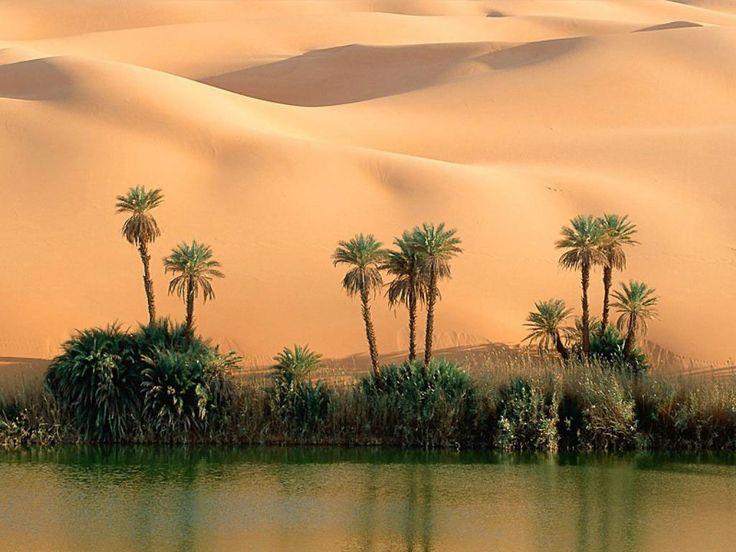 desert | Image oasis au milieu du désert