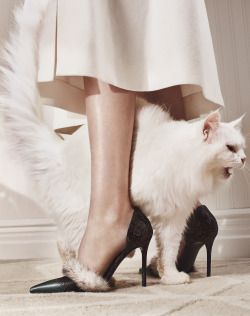wmagazine:  Cat PowerPhoto by Emma Tempest, styled by Michelle Cameron; W Magazine October 2015.
