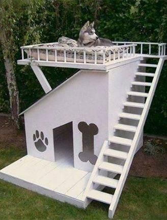 Mediterranean Doghouse A two-story Mediterranean-style doghouse is perfect for stylish dogs who love to entertain.