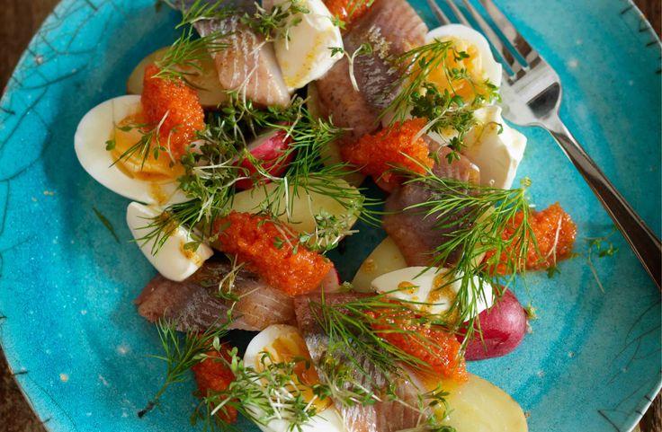 » Ljummen sallad på ägg, mandelpotatis, matjessill och brynt smör – Recept – Allt om Mat
