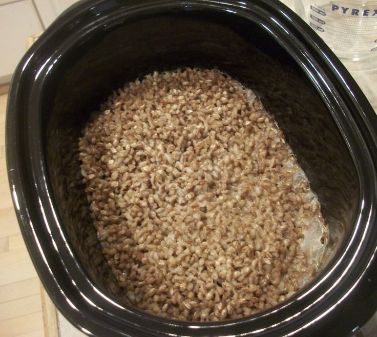 How to cook barley over night in a crockpot - 1 cup dry pearl barley 4 cups water; Start by rinsing and sorting 1 cup of dry pearl barley, Next, add it with 4 cups of water into your slow cooker. Alternately, you could add no-sugar added apple juice if you wished.