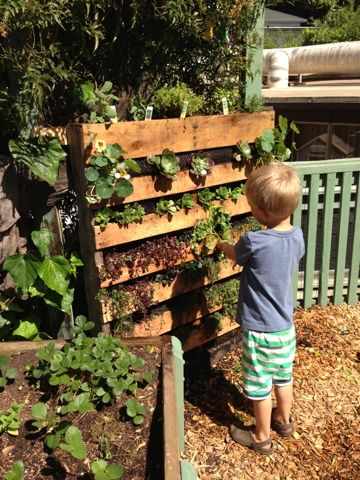 Our vertical garden DIY complete!(--frm original person)...  I love this idea for my extremely small patio (we have an apartment).