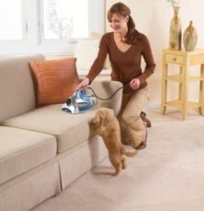 Get the best pet vacuum cleaner for your pet