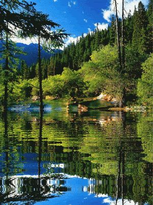 Animated Gif, Reflection, Water Reflections Water Reflection, Animated Gifs, Animated Graphics, Animated Landscape, Animated Landscapes, Keefers Photo: ...