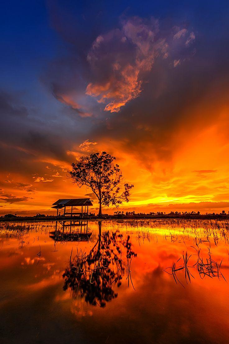 Jitra Malaysia  City new picture : Jitra | Malaysia, Beautiful Sunset and Nikon