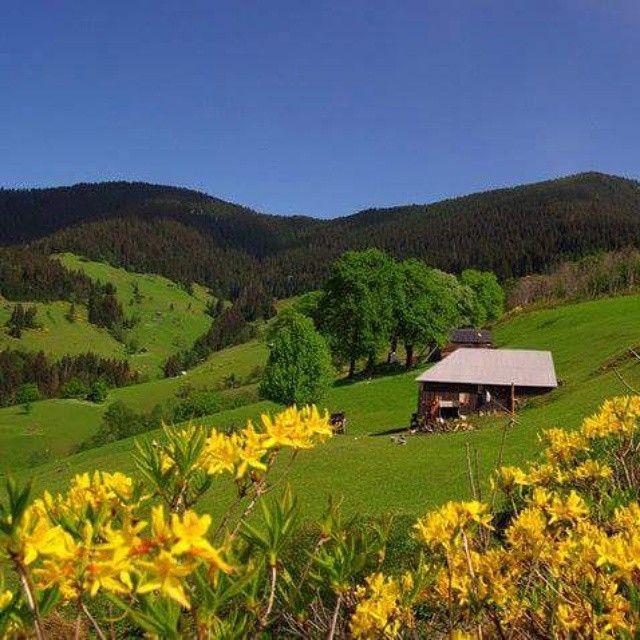 Trabzon, Eastern Blacksea Region of Turkey