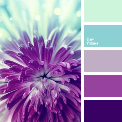 Palette of cold floral shades of blue and purple, translucent and saturated: hydrangea, lilac, fuchsia. This solution can be used in the design of bathroom: this combination of colors is able to increase the efficiency of your home aromatherapy with natural essential oils. #Color Palettes