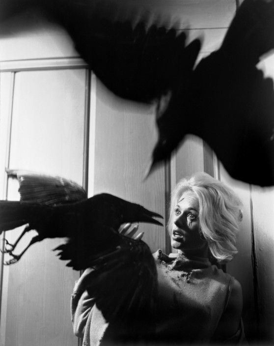"""Philippe Halsman USA. The American actress Tippi HEDREN in """"The Birds"""" by Alfred HITCHCOCK. 1962."""