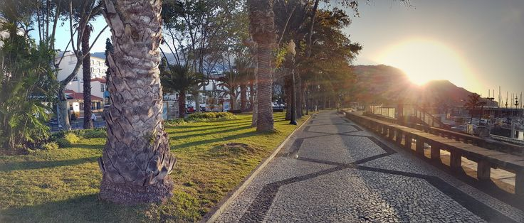 Going to work... #funchal