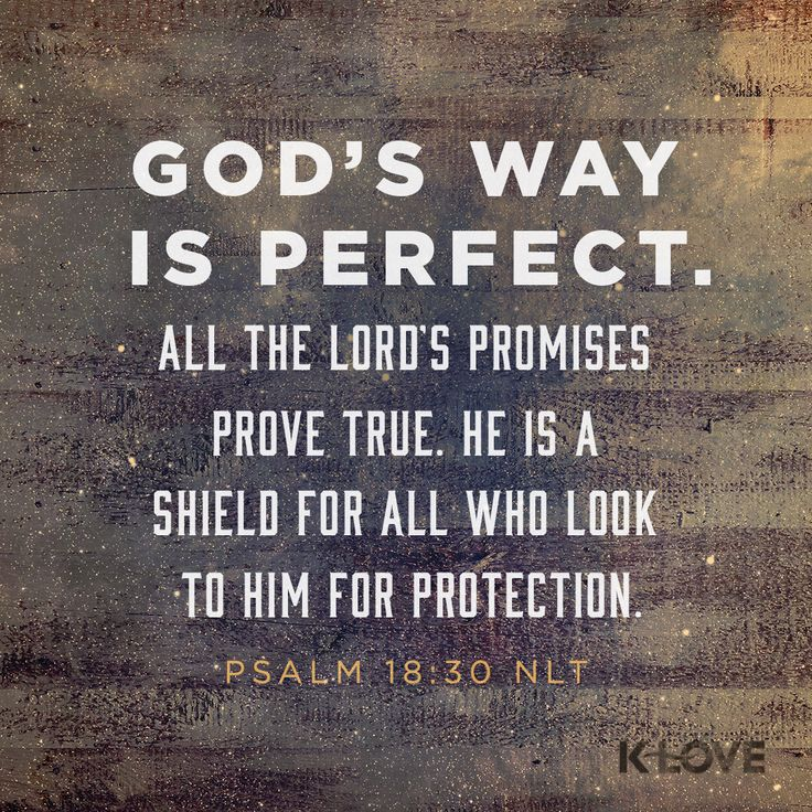 K-LOVE Daily Verse: God's way is perfect. All the LORD's promises prove true. He is a shield for all who look to him for protection. Psalm 18:30 NLT