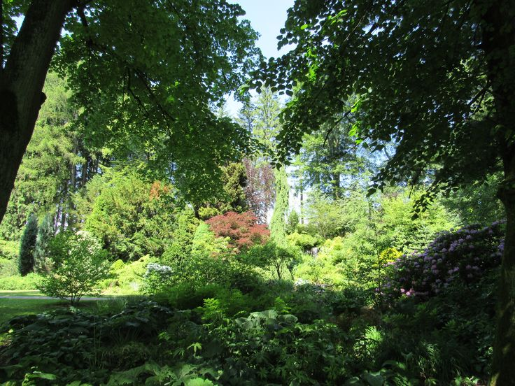 Jablunkov. Arboretum