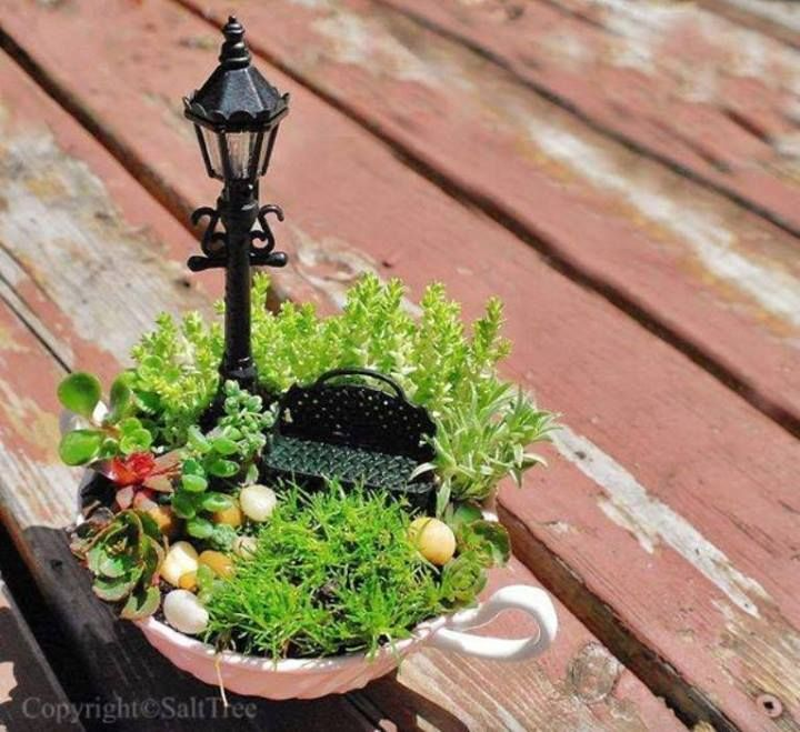 """Teeny Tiny Teacup Garden"""