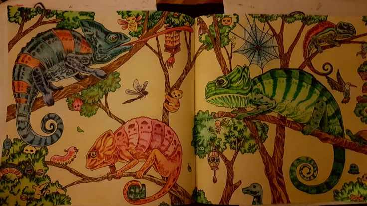 1000 Images About Colouring Ideas On Pinterest