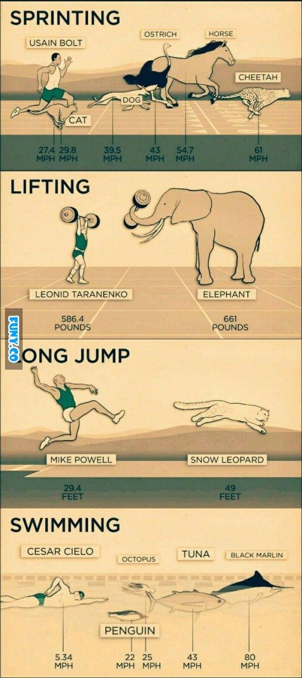 #memes #meme #funny #fun #funy #jokes #comedy #comic #humor