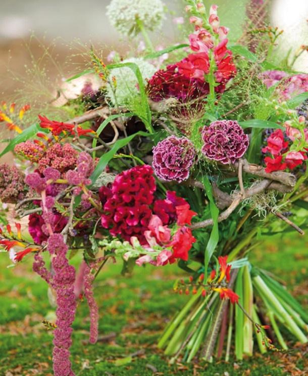 Flowers. Bloemen. Celosia. Dianthus.