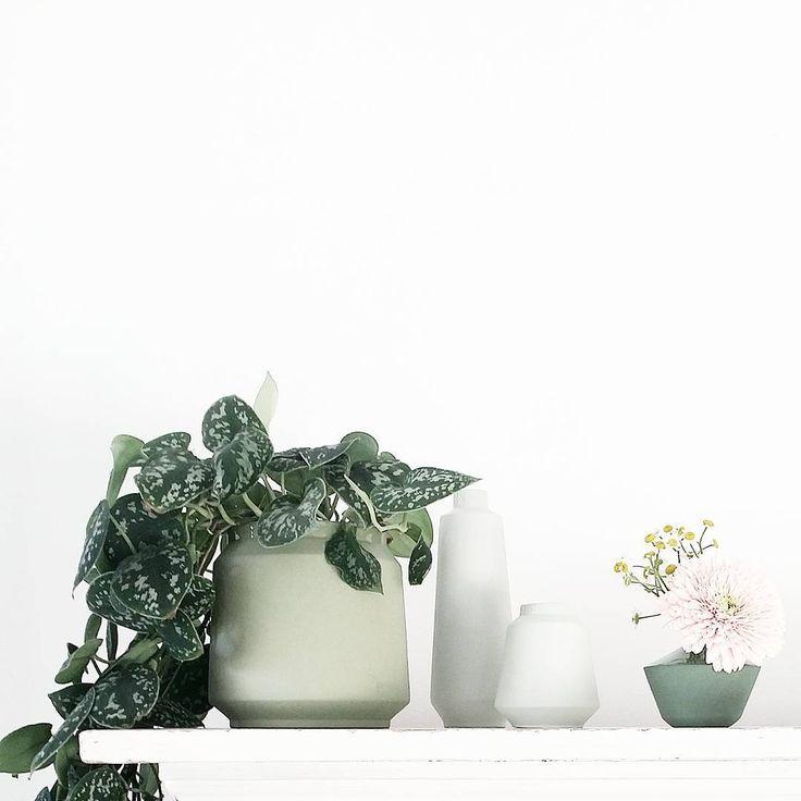 Love: groen, plantenpot en vaasjes van Nienke van de Pol en het vaasje van Hella Duijs [styling & fotografie door @lisannevandeklift]