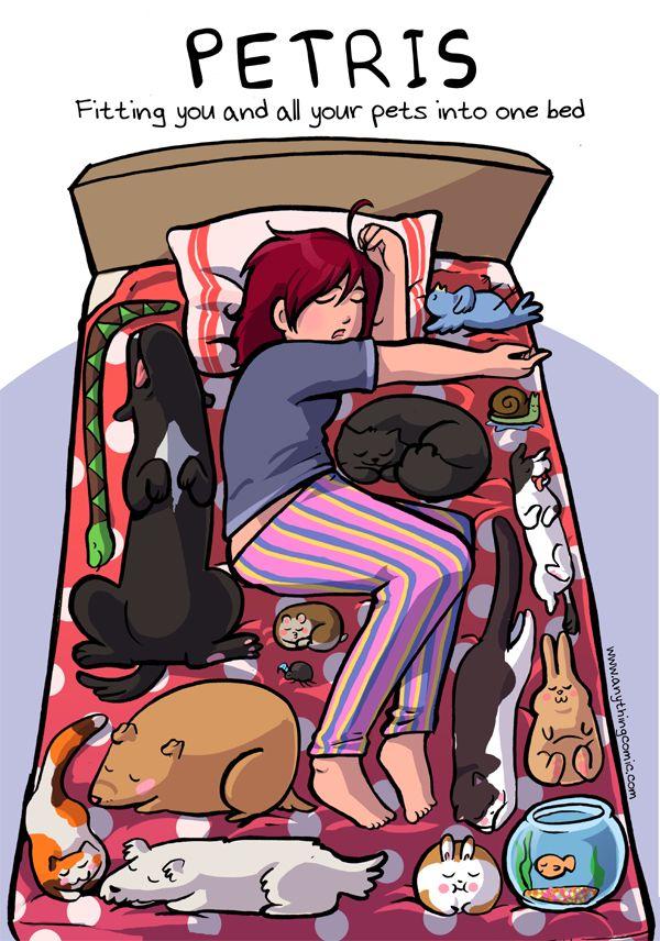Petris – Dormindo com todos os seus pets na cama
