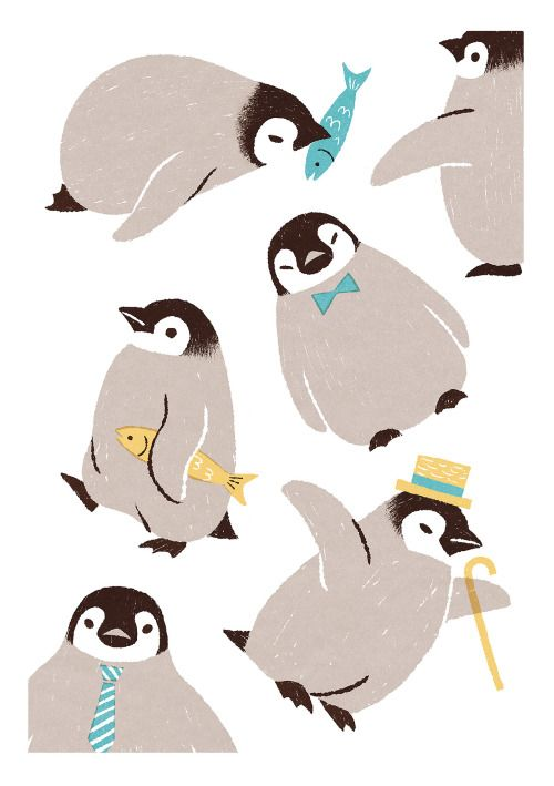 Best Penguins Images On   Animal Pictures Penguin