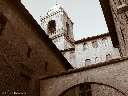 Rose walk (Assisi, Italy) ©Laura Silvestri