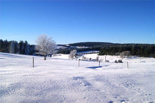saint bonnet le froid restaurant jacques et regis marcon - 3 étoiles guide michelin #snow #food