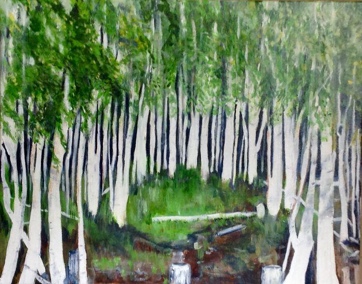 Alaskan birches..