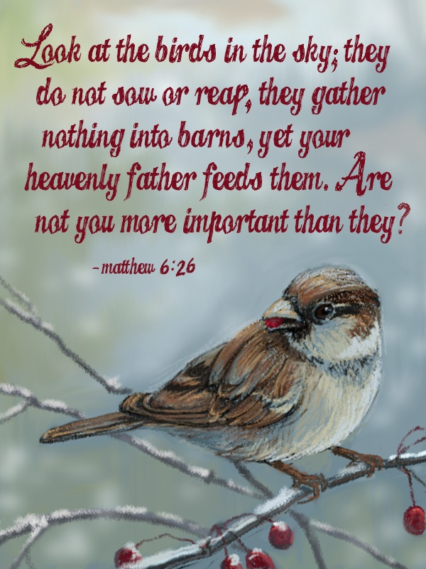 Look at the birds of the air, for they neither sow nor reap nor gather into barns; yet your heavenly Father feeds them. Are you not of more value than they? [Matthew 6:26]