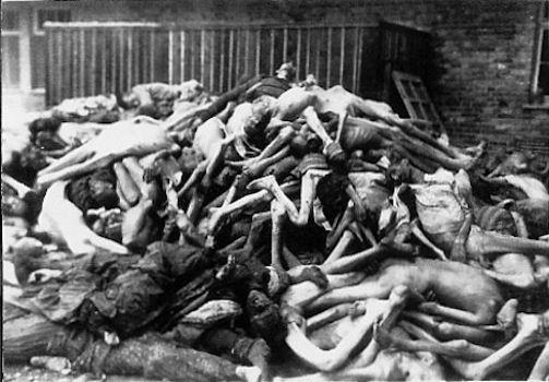 Nel 1933 6.000 persone vennero deportate Nazino, un'isola russa. Lasciati senza riparo nè cibo, cominciarono a verificarsi episodi di cannibalismo.